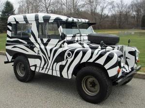 animal skin Vehicle Wrap